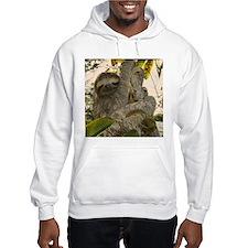Sloth Hoodie Sweatshirt