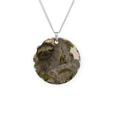 Sloth Necklace Circle Charm