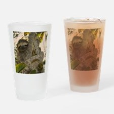 Sloth Drinking Glass