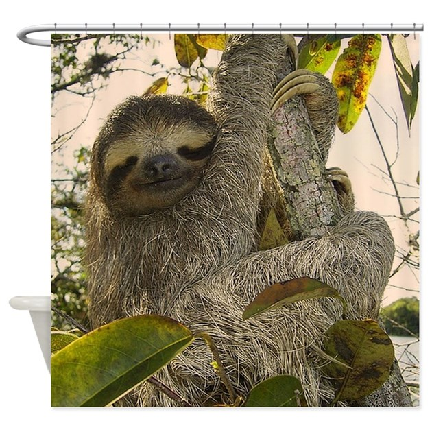 Sloth shower curtain by admin cp113089915 for Sloth kong shower curtain