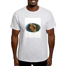 Ambrosia Ash Grey T-Shirt