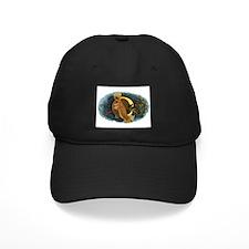 Ambrosia Baseball Hat