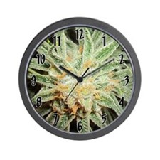 Cannabis Sativa Bud Wall Clock