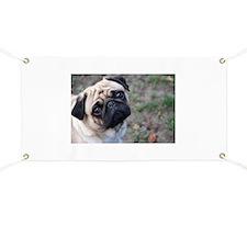Pug Banner