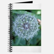 Cute Dandelion wishes Journal