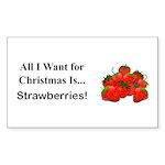 Christmas Strawberries Sticker (Rectangle 50 pk)