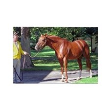 "SECRETARIAT - ""Big Red"" Magnets"