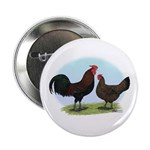 Redcap Fowl Button