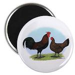Redcap Fowl Magnet