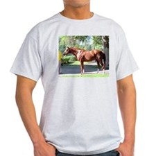 "SECRETARIAT - ""Big Red"" T-Shirt"