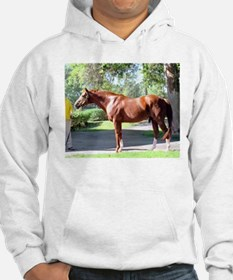 "SECRETARIAT - ""Big Red"" Hoodie"