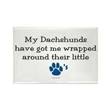 Wrapped Around Their Paws (Dachshund) Rectangle Ma