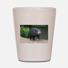 Cute Tasmanian Devil Photo Shot Glass