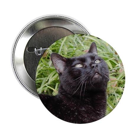 "Inspirational Black Cat 2.25"" Button (100 pack)"