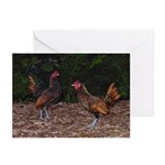 Two Roosters Note Cards (Pk of 10)