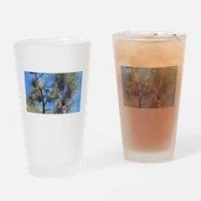 Torrey Pines Drinking Glass