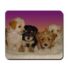 Yorkiepoo puppies mousepad