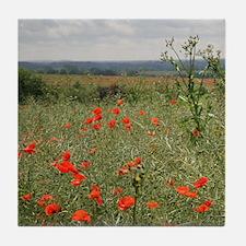 Poppies Beyond Poppies Tile Coaster
