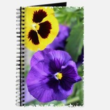 PANSIES Journal