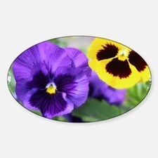 PANSIES Decal