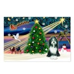 Xmas Magic & Beardie Postcards (Package of 8)