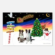 XmasSigns/2 Border Collies Postcards (Package of 8