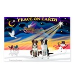 XmasSunrise/2 Border Collies Postcards (Package of