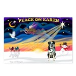 XmasSunrise/Catahoula Postcards (Package of 8)
