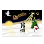 Night Flight/Catahoula Postcards (Package of 8)