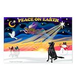 XmasSunrise/Fl Coat Retriev Postcards (Package of