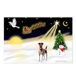 Night Flight/Fox Terrier 5 Postcards (Package of 8