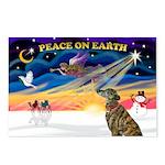 XmasSunrise/Greyhound (brin) Postcards (Package of
