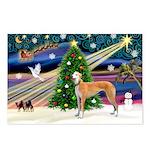 XmasMagic/Greyhound Postcards (Package of 8)