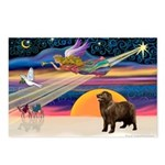 XmasStar/ Newfie Postcards (Package of 8)