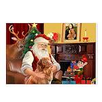 Santa/Nova Scotia Dog Postcards (Package of 8)