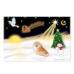 Night Flight/Pomeranian Postcards (Package of 8)