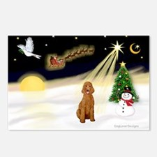 Night Flight/Std Poodle (blk) Postcards (Package o