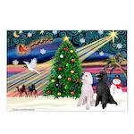 XmasMagic/ 2 Std Poodles Postcards (Package of 8)