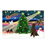 XmasMagic/ Std Poodle Postcards (Package of 8)