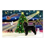 XmasMagic/PWD Postcards (Package of 8)