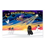 XmasSunrise/Schipperke Postcards (Package of 8)