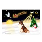Night Flight/Sheltie Postcards (Package of 8)