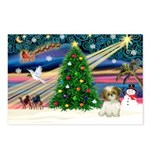 XmasMagic/Shih Tzu pup Postcards (Package of 8)
