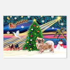 XmasMagic/Tibetan Spaniel Postcards (Package of 8)