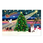 Xmas Magic & Corgi Postcards (Package of 8)
