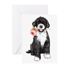 PWD Rose Greeting Cards (Pk of 20)