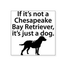 If Its Not A Chesapeake Bay Retriever Sticker