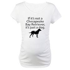 If Its Not A Chesapeake Bay Retriever Shirt