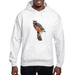 Young Robin Hooded Sweatshirt