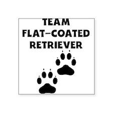 Team Flat-Coated Retriever Sticker